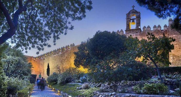AMRA y Amigos de la Alcazaba desvelan la «realidad» del Milenio de Almería en un manifiesto